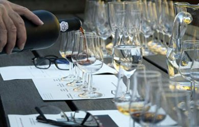 la stadera experiences wine